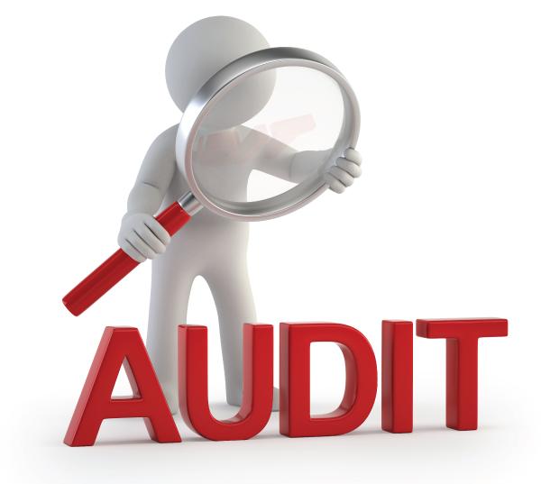 Cost_Audit